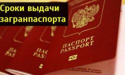 Российский паспорт срок изготовления