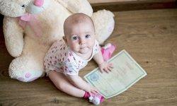 В каком органе можно сделать временную регистрацию ребенку