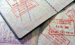 Проверка готовности гражданства рф по фамилии