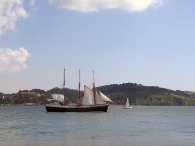 На реке Тежу в Лиссабоне часто можно увидеть вот такие парусники