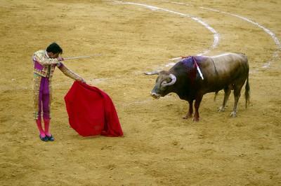 Коррида - массовое зрелищное шоу в Испании