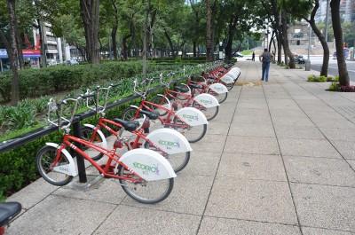 Аккуратная стоянка для велосипедов в парке