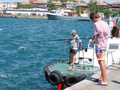 Для того, чтобы поймать рыбу на обед не обязательно далеко заплывать