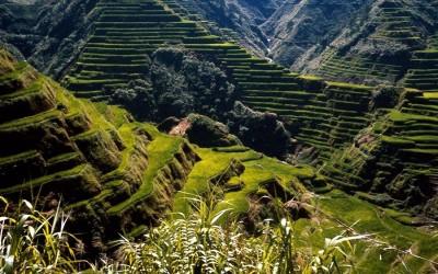 Такие горы с зелеными террасами вы нигде больше не встретите