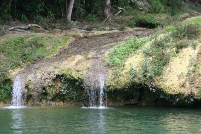Родник пресной воды в лесу на Кубе