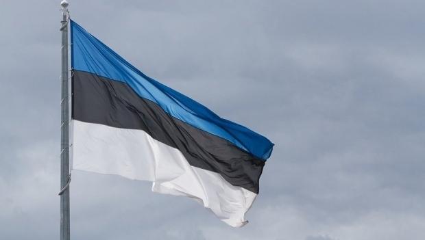 Эстонский флаг на темном фоне неба