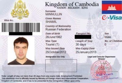 Подать документы через Интернет можно на e-visa