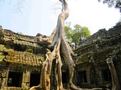 Древний храм Ангкор Ват, Камбоджа
