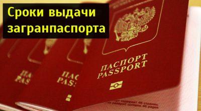 Максимальный срок изготовления загранпаспорта