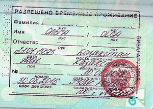 Как иностранцу получить рвп в россии