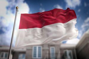 Флаг Индонезии