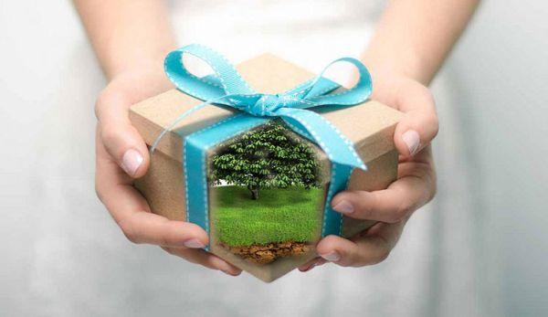Земельный участок в подарок