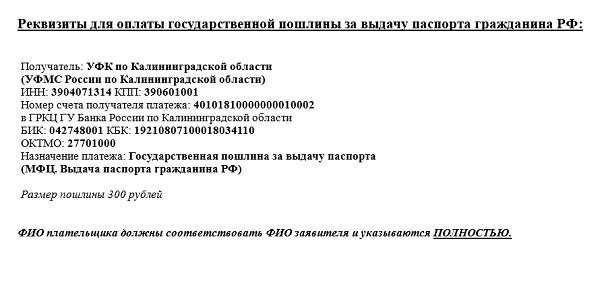 образец квитанции на оплату государственной пошлины за паспорт